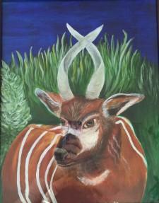 Bongo Antelope (acrylic)